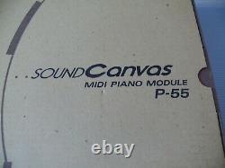 Roland P-55 Sound Canvas Piano Module rare Dead stock! New from japan